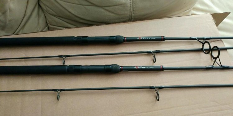 Dwarf carp fishing rods and