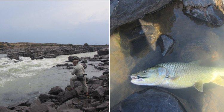 Ufudu Flyfishing | Ufudu Fly