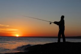 best-saltwater-fishing-rods