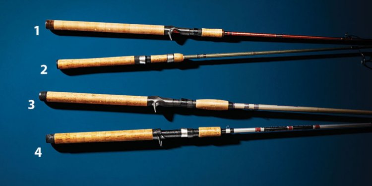 Best rods for trout fishing