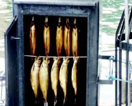 Commercial fish Smoking Equipment
