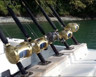 Shimano Fishing Rods and reels