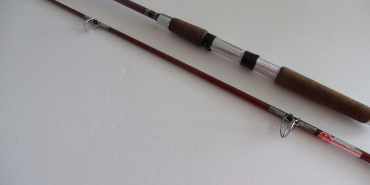 Heddon Pal Fishing rod